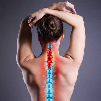 Jóga anatómia – Gyakorlatiasan - hétvége - 2020. jan. 11-12